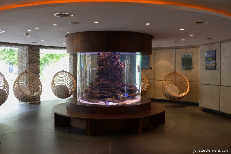 An aquarium and lounging chairs in the lobby