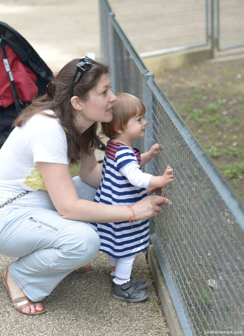 Mom and Juliette watching the goats play