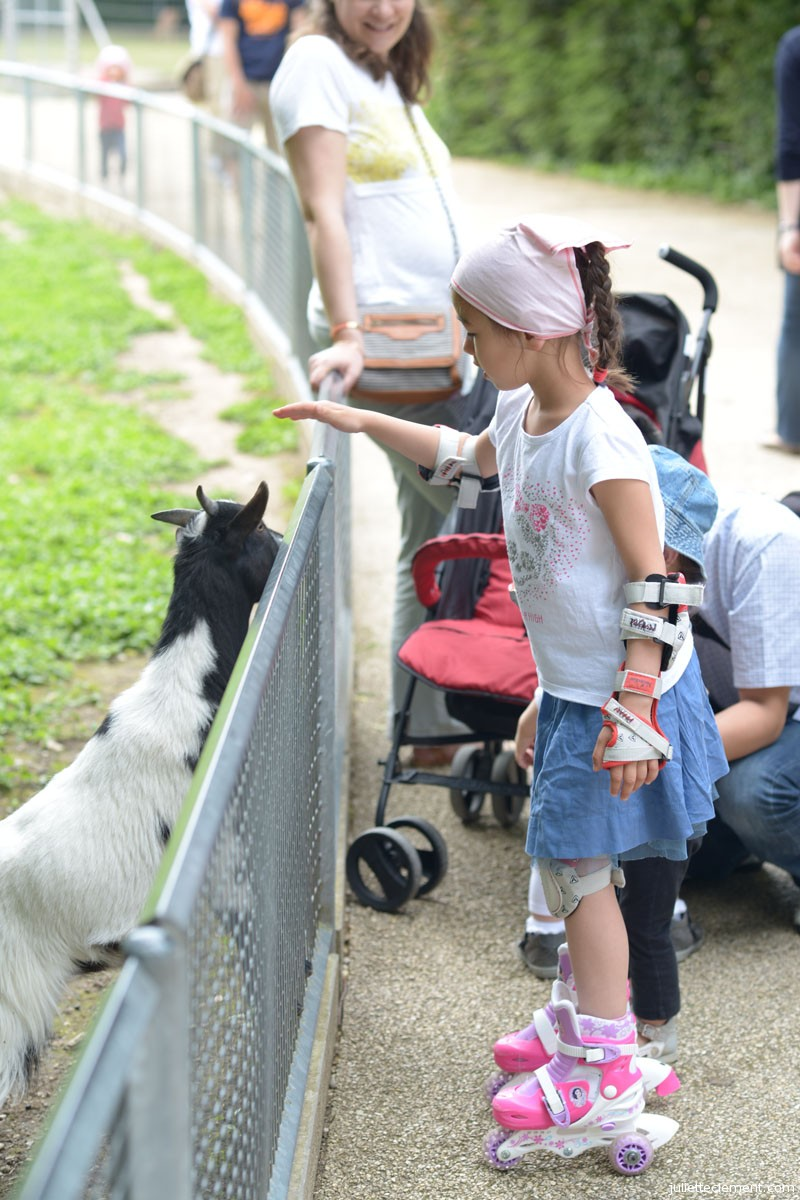 Pauline also liked to see the goats.