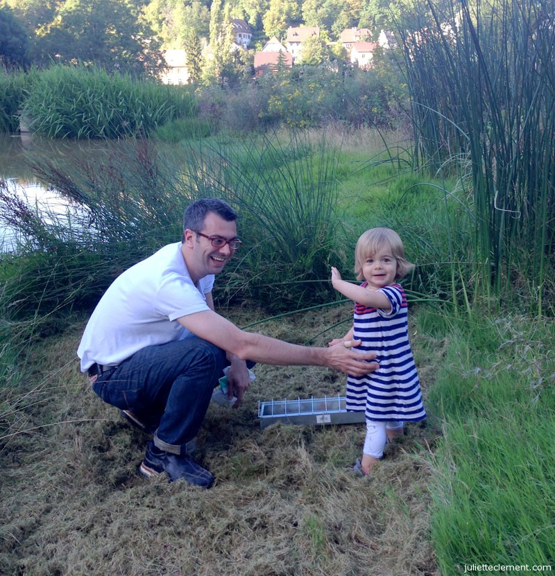 Juliette and Dad set up a new feeding stand for their ducks