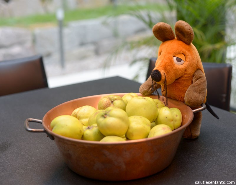 Getting ready to make quince jelly